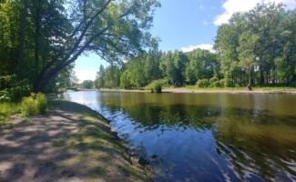 """""""ЛЕНГИДРОТЕХ"""" провел комплексное экологическое восстановление прудов в Колпино"""